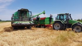 Završena žetva pšenice