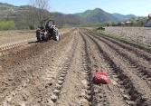 MIZ Bratunac uspješno realizira proljetnu sjetvu